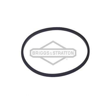 Slika od Brtva gumica rasplinjača Briggs & Stratton