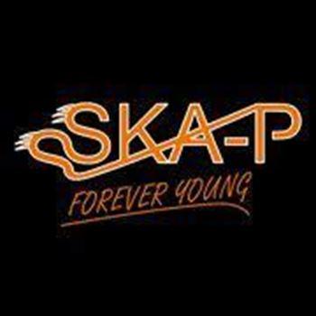 Picture for manufacturer SKA-P KACIGE